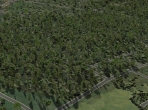 Forests in X-Plane 10